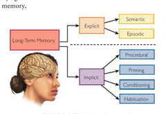 A Modified three-step Processing model of memory